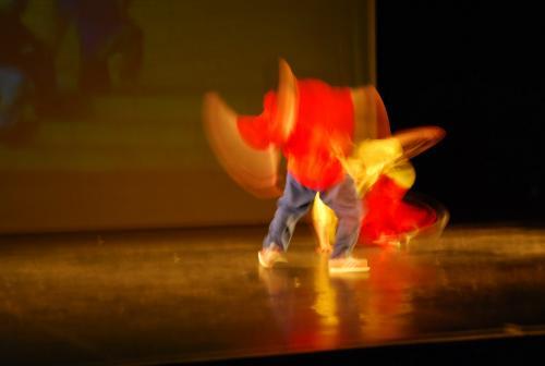 ud-theatre-connections-nemzetitancszinhaz-20100324-zsarnoczky-gyula-04